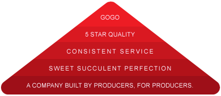 GOGO-Fruit-About-Us-Diagram